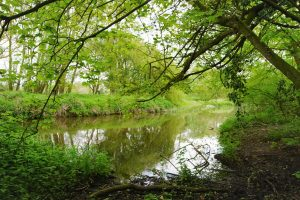Sudbury Stour Valley Trail, Suffolk. Photo © Katy Jon Went