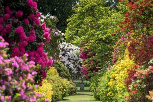 Stody Lodge Gardens, Long Walk, Urn, Norfolk