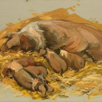 Artist Robert Nelmes, 'Rare Breed', Norfolk Showground, Oil, 30x40cm, £200