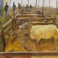 Artist Paul Alcock, 'Charollais Sheep', Norfolk Showground, Oil on board, 12x16in, £250